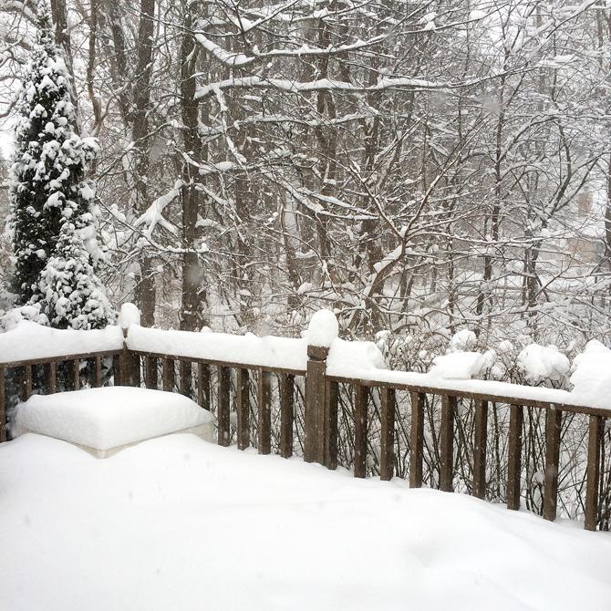 Snow-day-1